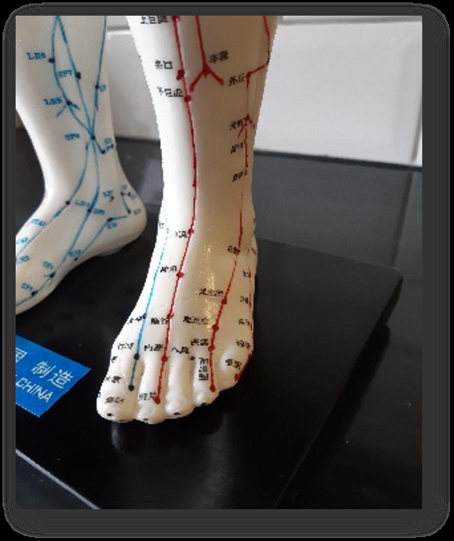 Behandeling voetreflex Hengelo